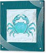 Turquoise Seashells Xix Acrylic Print