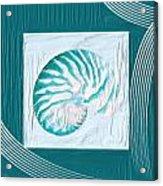 Turquoise Seashells Xxi Acrylic Print