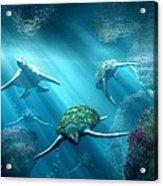 Turtle Alley Acrylic Print