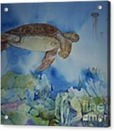 Turtle And Jelly Fish Acrylic Print