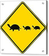 Turtle Crossing Sign Acrylic Print