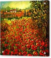 Tuscan Poppies Acrylic Print