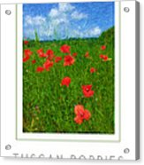 Tuscan Poppies Poster Acrylic Print