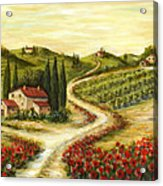 Tuscan Road With Poppies Acrylic Print