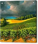 Tuscan Storm Acrylic Print by Michael Swanson