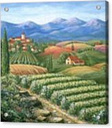 Tuscan Vineyard And Village  Acrylic Print