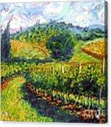 Tuscan Wind Acrylic Print by Michael Swanson