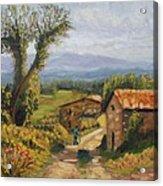 Tuscany Farm Road Acrylic Print