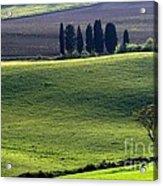 Tuscany Green Hills Acrylic Print by Arie Arik Chen