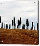 Tuscany Hill Acrylic Print by Arie Arik Chen