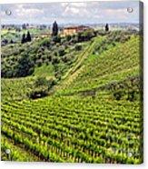 Tuscany-italy Acrylic Print