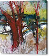 Tuscany landscape with red tree Acrylic Print