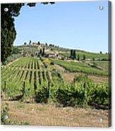 Tuscany Vineyard II Acrylic Print