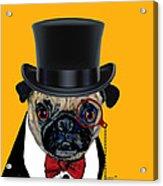 Tux Pug Acrylic Print