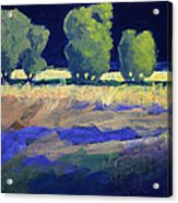 Twilight Landscape Acrylic Print