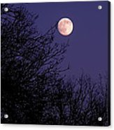 Twilight Moon Acrylic Print by Rona Black