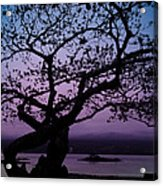 Twilight On Hilo Bay Hawaii Acrylic Print
