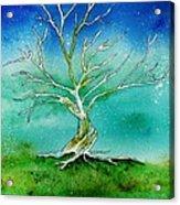 Twilight Tree Acrylic Print