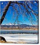 Twin Peaks Blue Acrylic Print