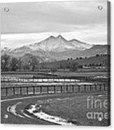 Twin Peaks Mt Meeker And Longs Peak Bw Country Acrylic Print