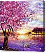 Twisted Blossom Acrylic Print by Ann Marie Bone