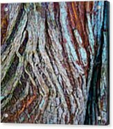 Twisted Colourful Wood Acrylic Print