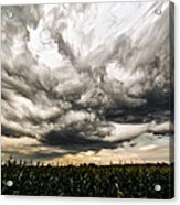 Twisted Sky Acrylic Print by Matt Molloy