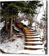 Twisted Staircase Acrylic Print