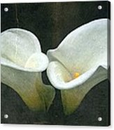 Two Acrylic Print by Cathie Tyler