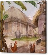 Two Chickens Two Pigs And Huts Jamaica Acrylic Print