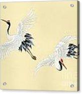 Two Cranes Acrylic Print