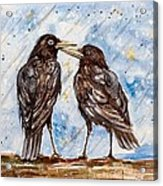 Two Crows On A Rainy Day Acrylic Print