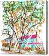 Two Dark Trees In West Hollywood -california Acrylic Print