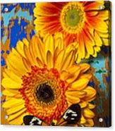 Two Golden Mums With Butterfly Acrylic Print by Garry Gay