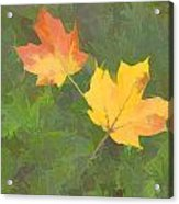 Two Leafs In Autumn Acrylic Print