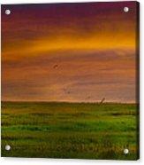 Two Mile Landing Colorful Sky Acrylic Print