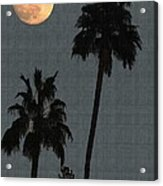 Two Palms And The Moon Acrylic Print