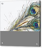 Two Peacock Feathers Acrylic Print