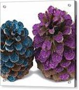 Two Pineapples Acrylic Print