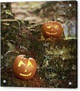 Two Pumpkins Acrylic Print