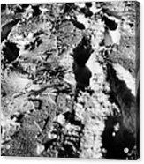 two sets of fresh footprints crossing deep snow in field Forget Saskatchewan Canada Acrylic Print by Joe Fox