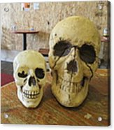 Two Skulls - At The Cafe Acrylic Print