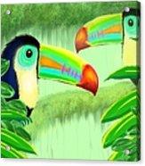 Two Toucans Acrylic Print
