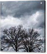 Two Trees Beneath A Dark Cloudy Sky Acrylic Print