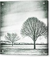 Two Trees In A Field Acrylic Print