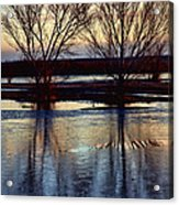 Two Trees In The Bosque Acrylic Print