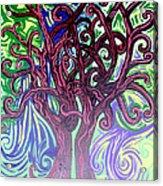 Two Trees Twining Acrylic Print