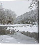 Tyler Park In Winter Acrylic Print