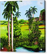Typical Country Cuban Landscape Acrylic Print