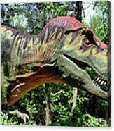 Tyrannosaurus Rex  T. Rex Acrylic Print